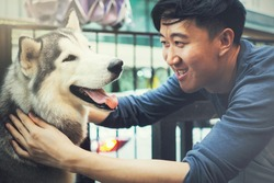 Young Asian male dog owner playing and touching the happy Husky Siberian dog pet with love and care.