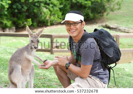 Young asian man wearing glasses is feeding Kangaroo in a park. Exchange student in Australia. #537232678