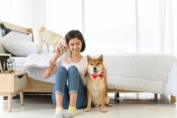Young Asian woman relaxing and playing with three dogs (brown shiba inu, white shiba puppy and white maltese) in bedroom at home, Cheerful and nice couple with people and pet. Pet Lover concept