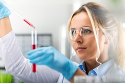 Young attractive female scientist in protective glasses and gloves dropping a red liquid substance into the test tube with a long glass pipette in the scientific chemical laboratory