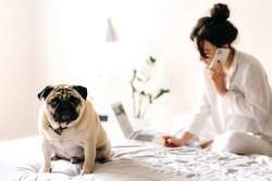 Young beatiful girl is talking by phone and writes a note and near her is lying a dog. Home office. Concept of working and studying at isolation.