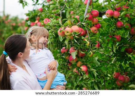 Young beautiful mother and her daughters picking fresh organic apples on a farm