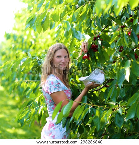 Young beautiful woman picking ripe delicious sweet cherries from the tree in agricultural bio farm on sunny summer day