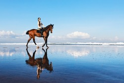 Young beautiful woman ride on sand beach. Horse with rider run along sea surf by water pool. Horseback walking tours, outdoor recreational sport, adventure activity on family summer vacation with kids