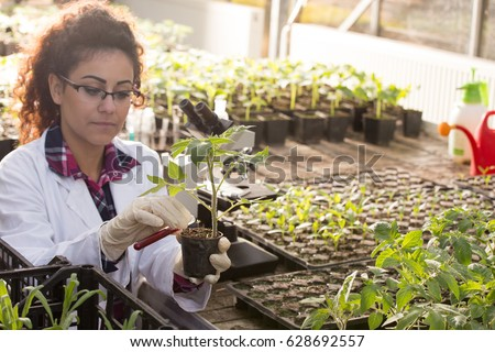 Young biologist pouring liquid chemicals in flower pot with sprout in greenhouse. Plant protection and biotechnology concept #628692557
