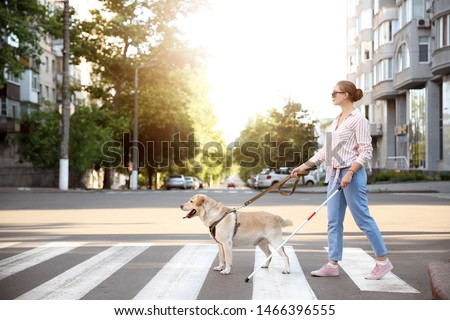 Young blind woman with guide dog crossing road #1466396555