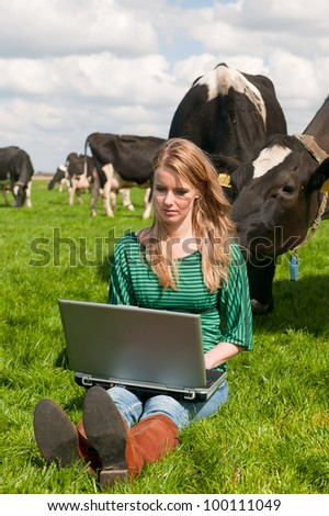 Young blond Dutch girl working with laptop in farm field with black and white cows
