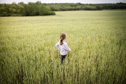 Young blonde girl in a wheat field.