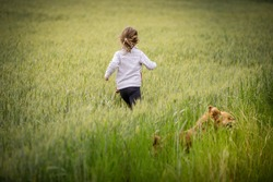 Young blonde girl in a wheat field with a dog