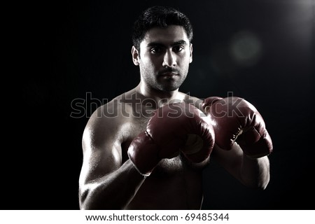 young boxer on black background geniune lens flare