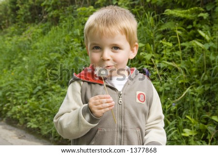 Young boy blowing the tiny parachute seeds from dandelion flower.