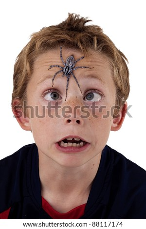 young boy cross eyed and terrified as he tries to see a giant wolf spider on his forehead