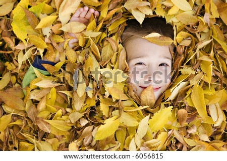 Young Boy Hiding in a Pile of Autumn Leaves