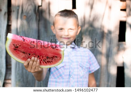 young boy holds a large piece of watermelon against a wooden rural wall, a little schoolboy offers a fresh watermelon on a sunny summer day, free space #1496102477