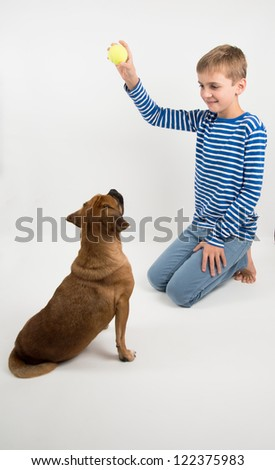 Young Boy in Striped Shirt Playing with His Puggle Dog