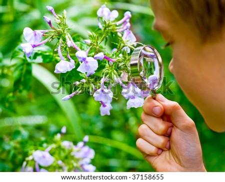 Young boy looking at flower through hand magnifier, shallow DOF