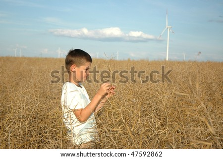 young boy on the field of wind power stations