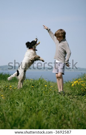 young boy playing with dog in park