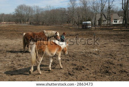 young boy walking horses