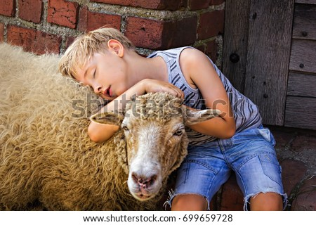 young boy with blonde hair wearing shorts and striped vest hugging a sheep. sheep holding her head on boy's lap. summertime in the summertime #699659728