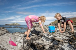 Young brother and sister rock pooling on the Cornish coast on a sunny, summers day.