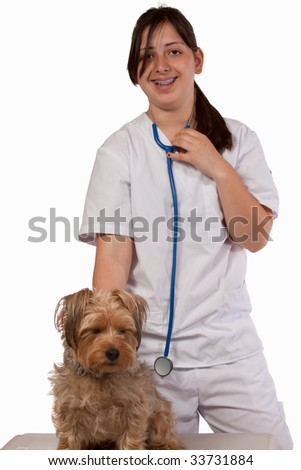 Young brunette hispanic Animal nurse or Veterinarian examining a pet Yorkshire Terrier Dog