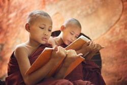 Young Buddhist novice monk reading and study outside monastery, Myanmar.