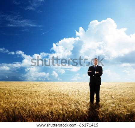 young businessman on yellow wheat field #66171415