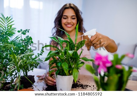 Young businesswoman sprays plants in flowerpots. Woman caring for house plant. Woman taking care of plants at her home, spraying a plant with pure water from a spray bottle