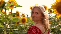 Young Caucasian blond haired woman in a bright red cotton dress walks through a blooming sunflower field. Beautiful summer landscape agriculture lifestyle