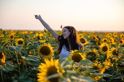 Young caucasian girl with long dark hair and white t-shirts in summer sunflower field, looking happy, summer concept, morning joy