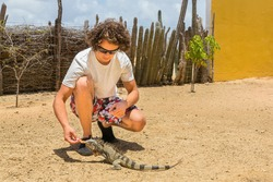 Young caucasian man feeds iguana on ground in park on Bonaire