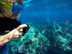 Young caucasian man free diver closeup wearing snorkeling mask taking picture of tropical fish with action camera deep underwater. Coral reef Koh Tao island, Thailand.