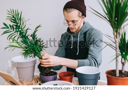 Young caucasian man gardener in eyeglasses transplanting plant in pots on the white wooden table and using tablet computer. Concept of home garden. Foto stock ©