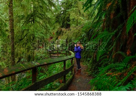 Young Caucasian woman takes pictures of beautiful moss covered trees while trekking around the lush Hoh Rainforest in Washington, USA. Female photographer taking photos of the vibrant green forest.
