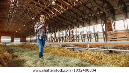 Young Caucasian woman using tablet device and walking in farm stable. Female farmer tapping and scrolling on gadget computer in shed. Technology in farming. Sheep flock on background. Foto stock ©