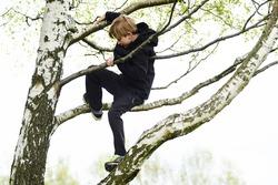 Young child blond boy climbing tree