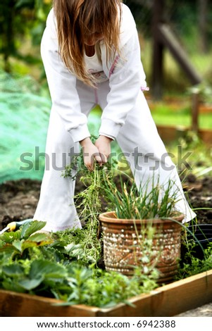 Young child helping pulling weeds out of the garden