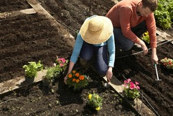 young couple crouching in their garden and planting flowers