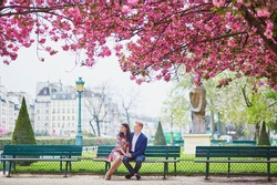 Young couple in love having a date under pink cherry blossom trees. Tourists visiting Paris at spring