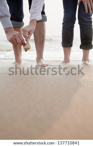 Young couple looking at seashells on the beach, close up on legs and hands #137710841