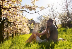 Young couple relaxing on a spring sunny day surrounded by blooming tree culture with beautiful pink cherry flowers/ Lovers relaxing in beautiful panorama with blooming trees/