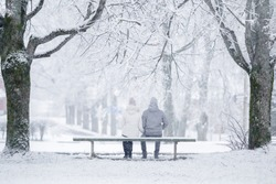 Young couple sitting on bench between trees at park in white winter day after blizzard. Fresh first snow. Romantic lovely moment. Peaceful atmosphere. Dating concept. Back view.