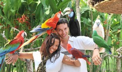 Young couple with tropical birds on bali island Indonesia