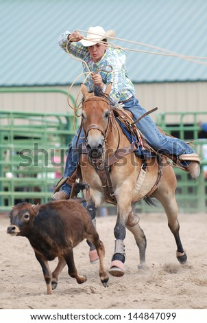 Young Cowboy competing in calf roping during a rodeo.