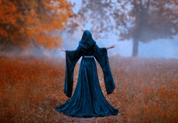 young Dark queen holds hands raised. autumn mystic forest fog orange tree. vintage blue velvet cape dress hood. art photo fantasy mysterious woman silhouette medieval back witch, Halloween design