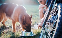 Young dog owner enjoying in the park with his pet. Dog drinking from water container. Pets and animals concept