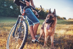 Young dog owner enjoying in the park with his pet. Friendship between man and dog. Pets and animals concept