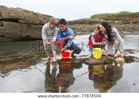 Young family at beach collecting shells