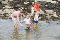 Young family at the seaside searching for fish and crabs among the rocks on the waters edge.